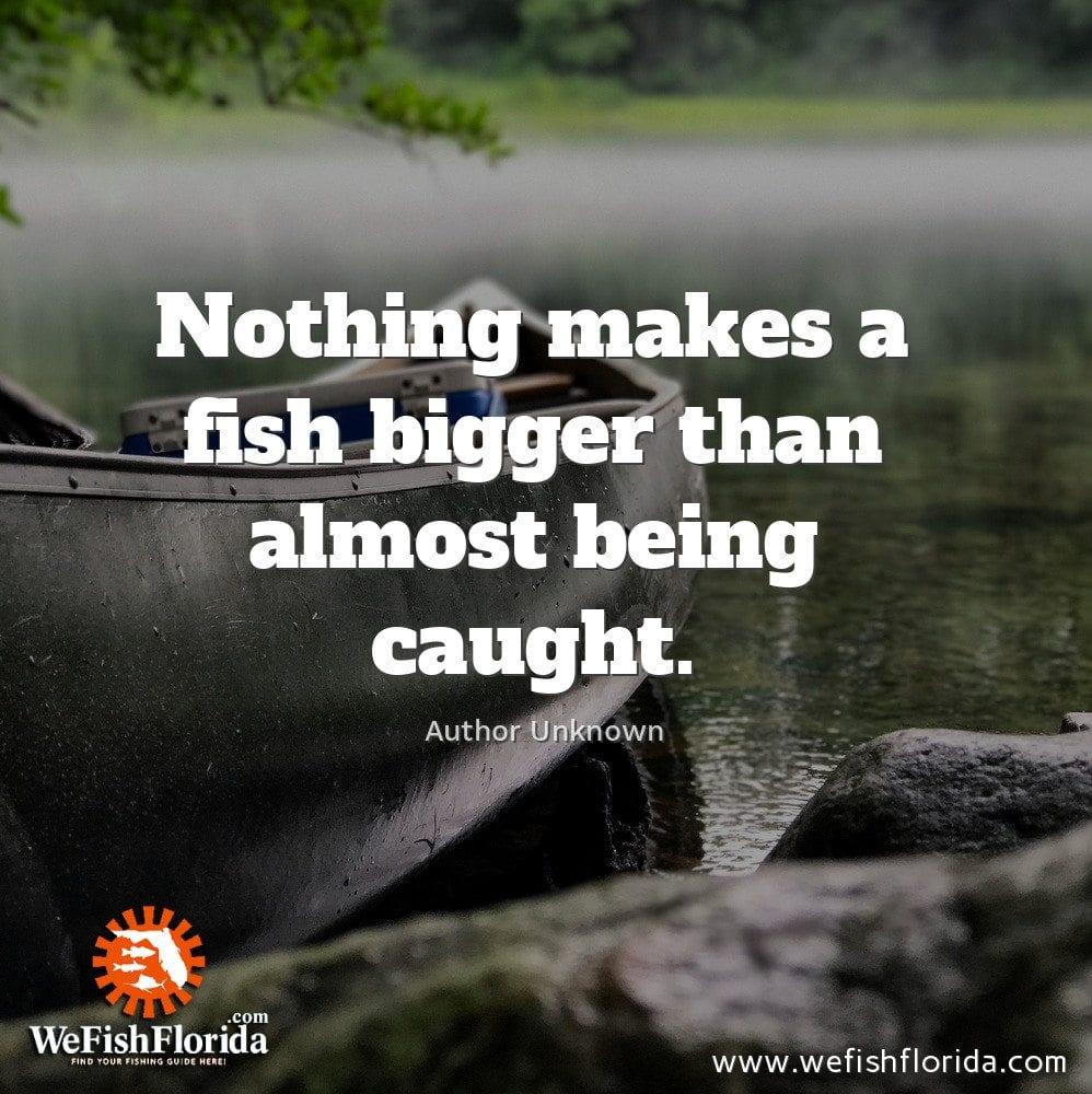 Nothing makes a fish bigger…