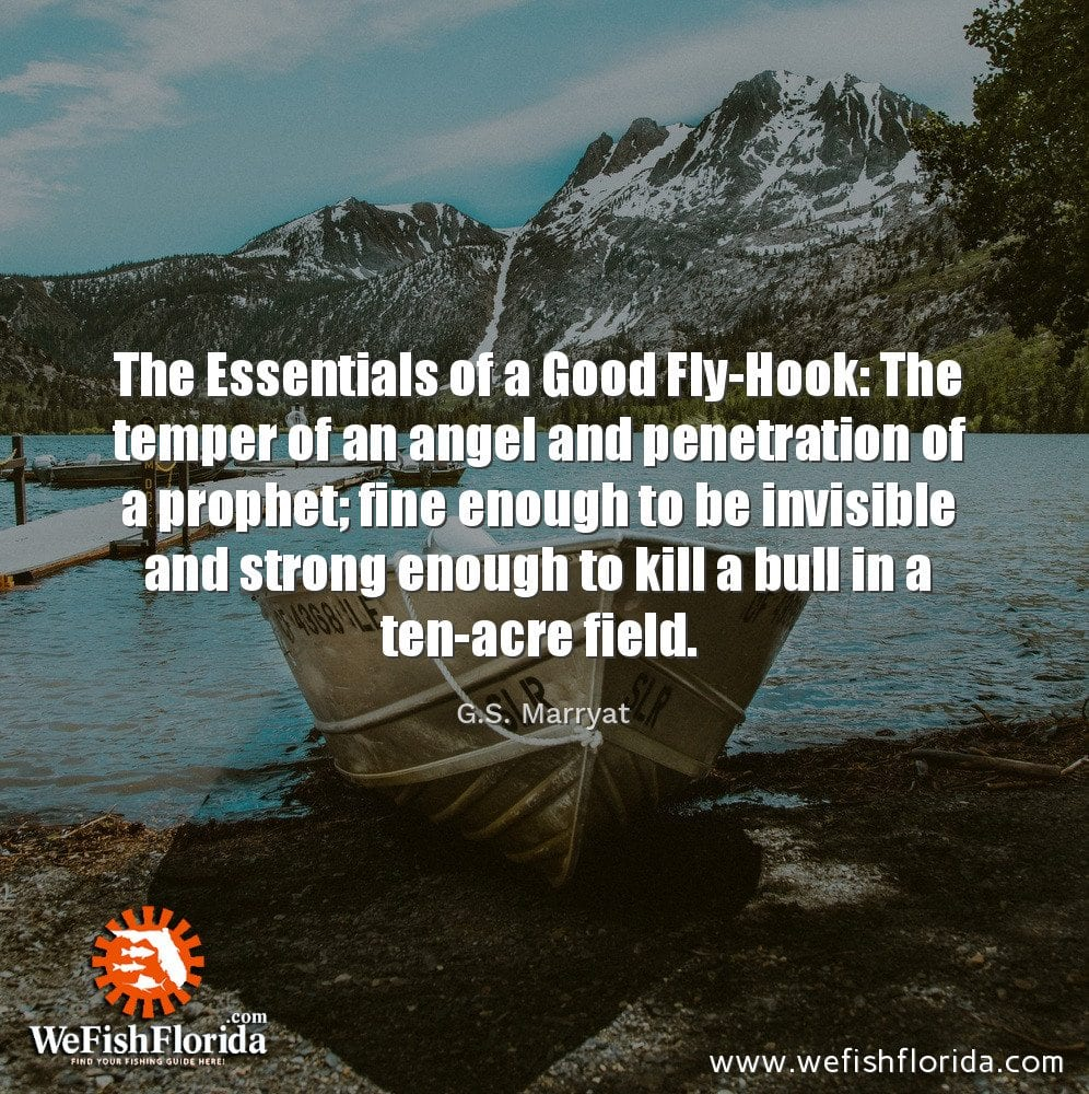The Essentials of a Good Fly Hook…