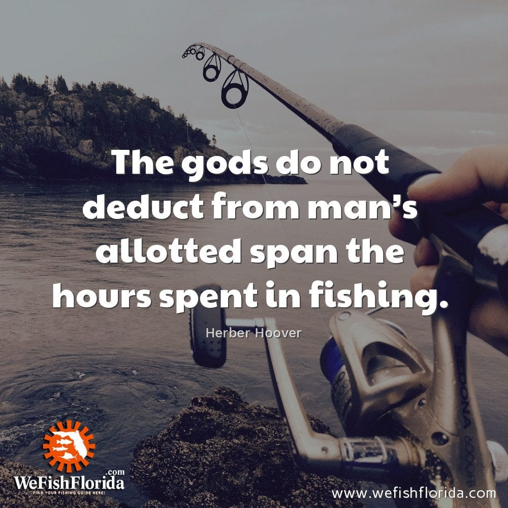 The gods do not deduct from man's allotted span…